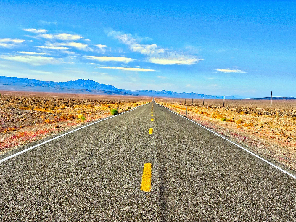 Dog-friendly road trip destinations near Arizona