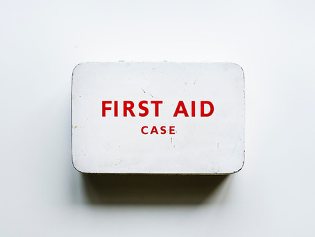 All You Need to Know About Pet First Aid