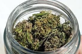 Delta 8 Weed