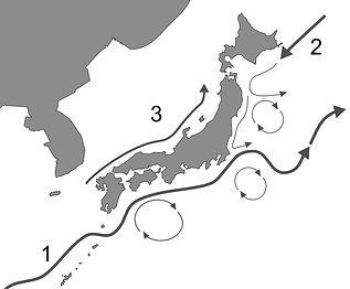 Japan Ocean current.jpg