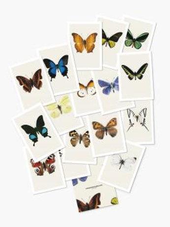 Hagedornhagen postcards Butterflies & Bugs (PC1)