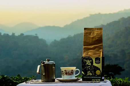 Gorilla-Conservation-Coffee-Coffee-and-v