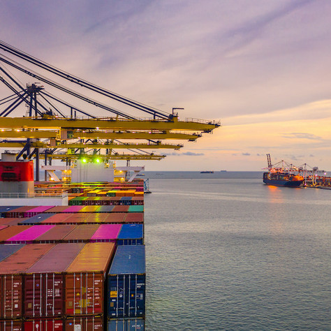 The Pandemic and Its Aftermath:The Role of Trade Policy