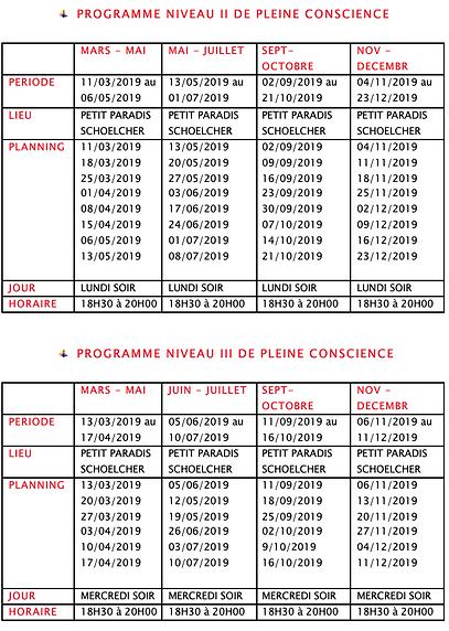Capture d'écran 2019-02-06 à 13.13.53.pn