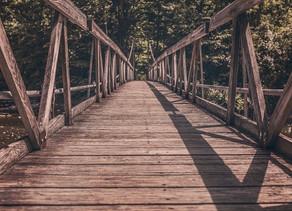 Bridging the gap between dreams and reality