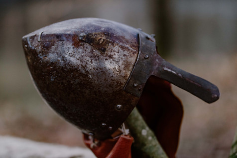 pegase prod chevaux viking photo