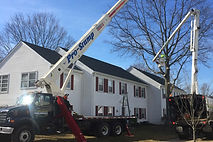 Tree Removal, Tree Topping, Trimming & Pruning, Tree Tabling, Land Clearing, Root Feeding, Stump Grinding