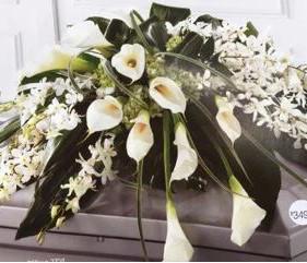 flowers-orc.JPG