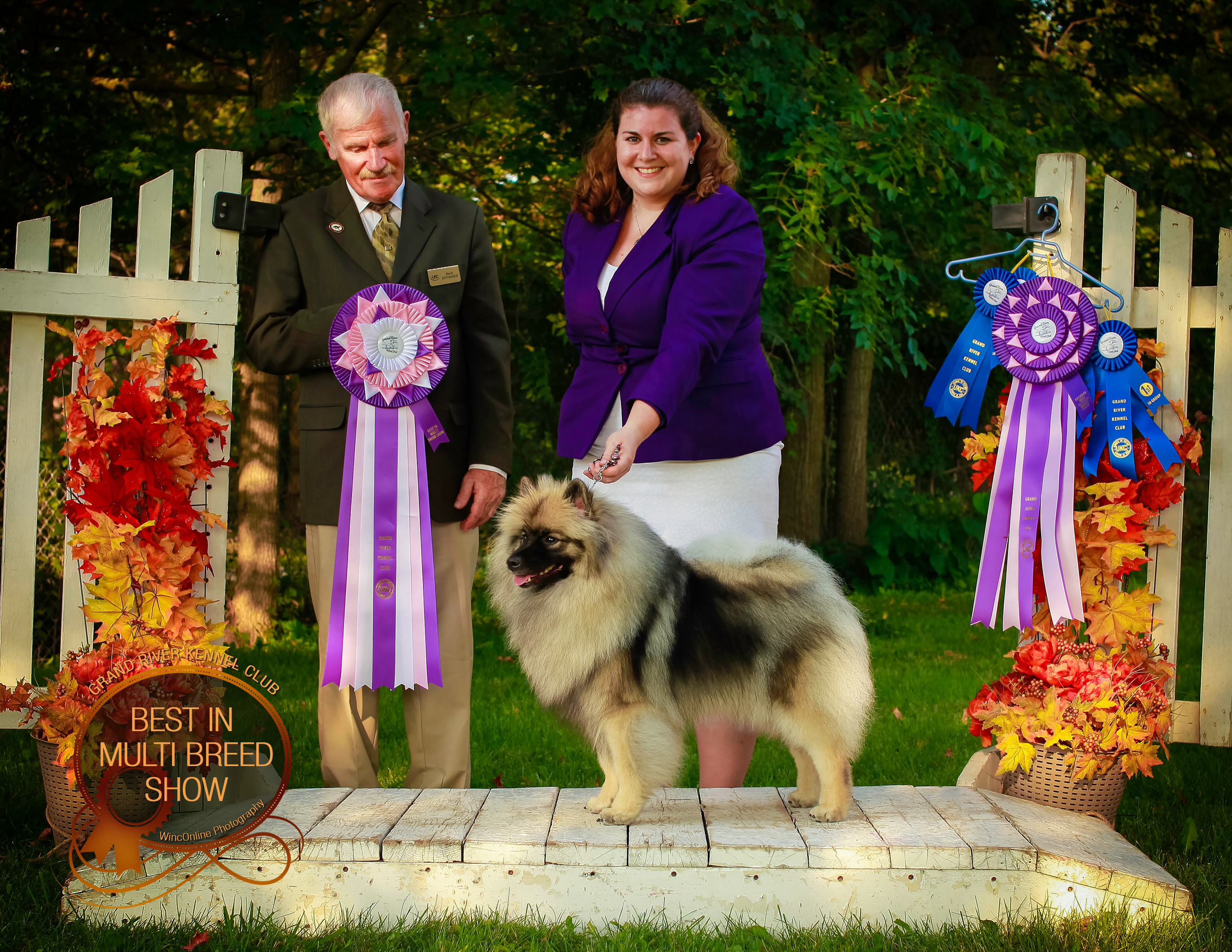 UKC Best in Show and RBIS
