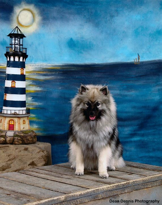 I wish I had brought a brush with me, especially for Zivah!! _Zivah's portrait by Dean Dennis at the