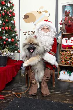 Totoro with Santa