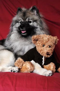 lexie and bear