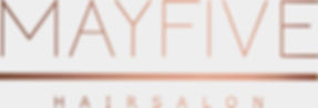 MAYFIVE_Logo_Colourbackground.jpg