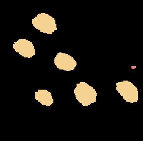 individual brush strokes-19.png