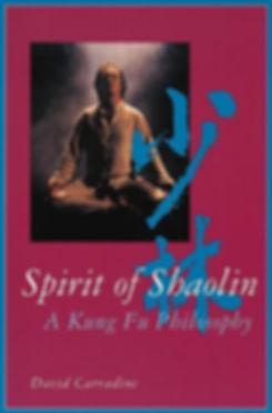 spirit of shaolin.jpg