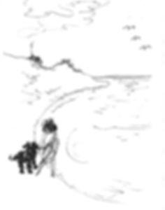Malibu-Seagull.jpg