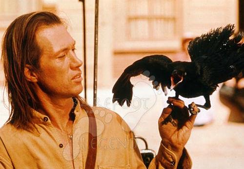 caine-crow.jpg