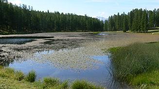 Lac de la Motte tremblante