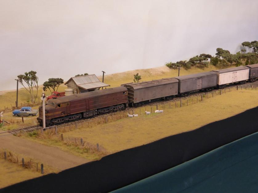 P1000152 (Large).jpeg
