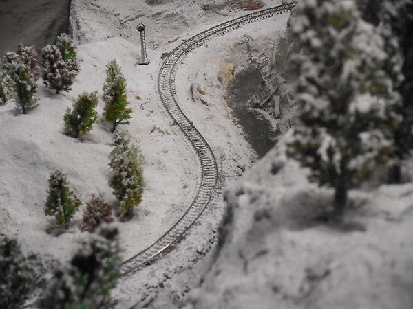 DSCN0341 In the snow.JPG