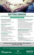 pregnancy.poster.TTTF.11x17.jpg