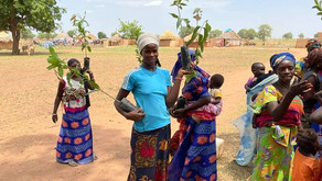 Even during the pandemic NFI continued to support reforestation