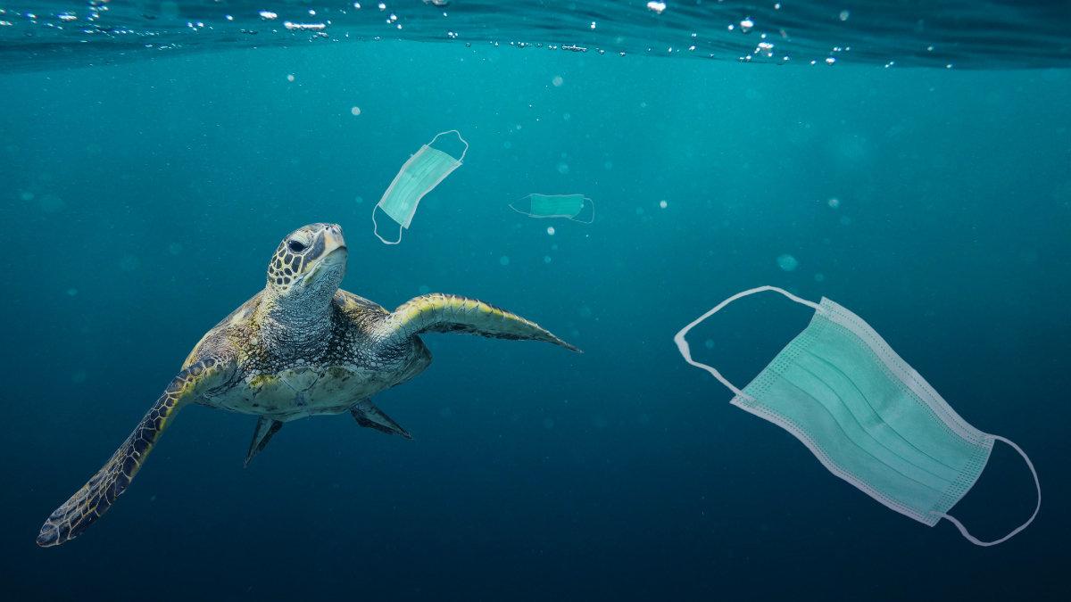 2020-27-07_Plastic-pollution_1200x675.jp
