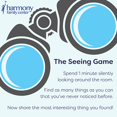 Instructions for how to play the seeing game