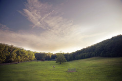 Montvale Pastures