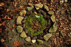 nature Mandala at Montvale