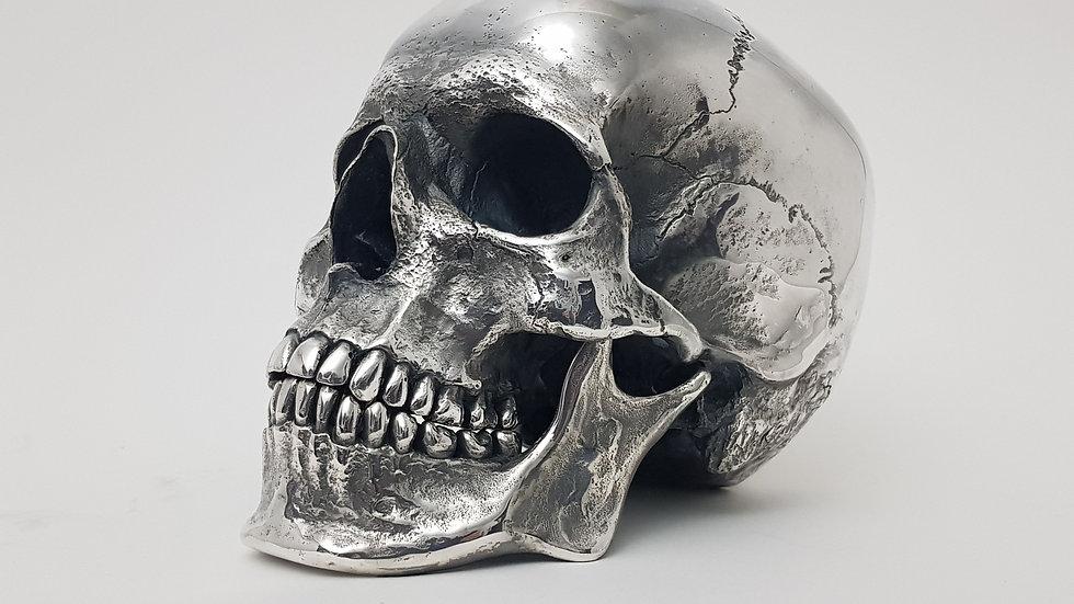 Polished Steel Skull