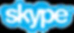 Skype children's school visits