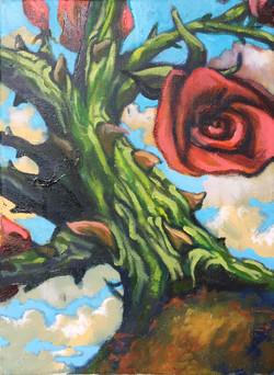 Rose Study 9x12