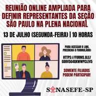 REUNIÃO ONLINE PARA DEFINIÇÃO DE REPRESENTANTES DA SEÇÃO SÃO PAULO NA PLENA NACIONAL DO SINASEFE