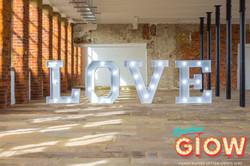 LOVE copy 2