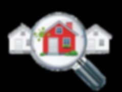 mold-logo-no-bg.png