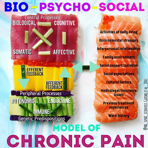 chronic pain sushi science janelle letzen