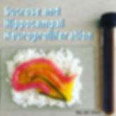 Sushi Science | Janelle Letzen | Sucrose