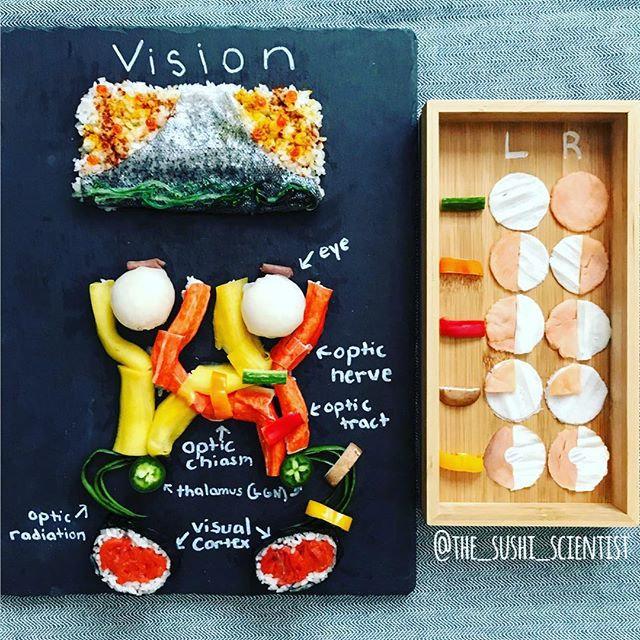 Sushi Science | Janelle Letzen | Vision