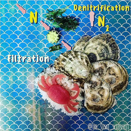 Sushi Science | Janelle Letzen | Oysters