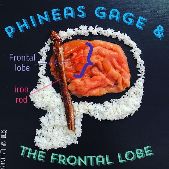 Sushi Science   Janelle Letzen   Phineas Gage
