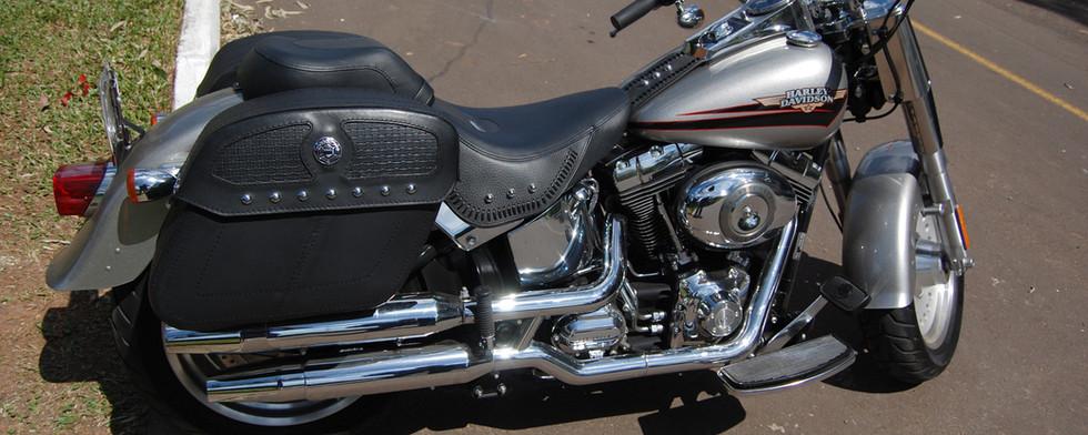 Modelo HD M 7 Cravos