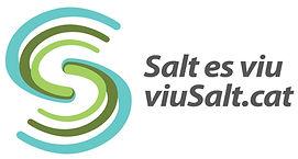 Logo_ViuSalt_vs2.jpg