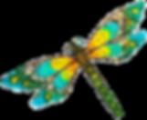 3DrgnflyFrm_SHIRT_DRGNFLY-lyr3_edited.pn
