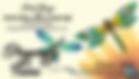 DFF_BusCardV1PRF-WEB_edited.png