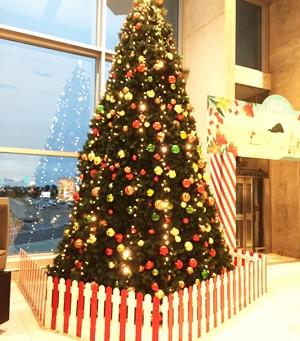 今年も残りわずかとなりました。  Merry Christmas!!