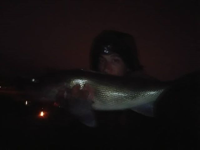 #outlawriverman #eyes #walleye #walleyef