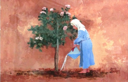 Saving Her Roses, Year of the Drought
