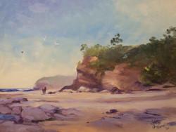 Cape Paterson Cliffs