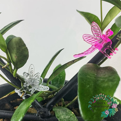 Dragonfly Clips (Assorted Colours)